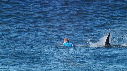 Fanning Shark attack